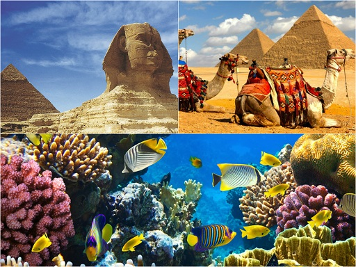 Egypt- early booking till 28.10.2014